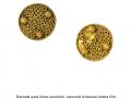 5-dischetti-aurei