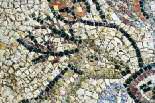 Mosaico Palazzo Pianciani | Particolare