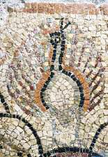 Mosaico Palazzo Pianciani   Particolare