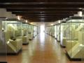 museo archeologico (7)