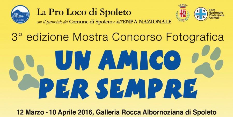 <!--:it-->Un amico per sempre - 3° edizione Mostra Concorso Fotografica<!--:--><!--:en-->Forever Friends - Photo Competition/Exhibition<!--:--> @ Galleria Rocca Albornoziana di Spoleto | Spoleto | Umbria | Italia
