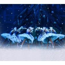 <!--:it-->LO SCHIACCIANOCI - Ballet of Moscow<!--:--><!--:en-->The Nutcracker - Ballet of Moscow<!--:--> @ Teatro Nuovo Gian Carlo Menotti | Spoleto | Umbria | Italia