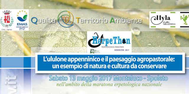 <!--:it-->Escursione alla scoperta dell'habitat dell'ululone appenninico<!--:--> @ Monteluco  | Monteluco | Umbria | Italia