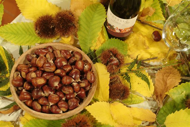 <!--:it-->Giornata delle Castagne e dei Funghi<!--:--><!--:en-->Chestnuts and Mushrooms Day<!--:--> @ Montebibico   Montebibico   Umbria   Italia