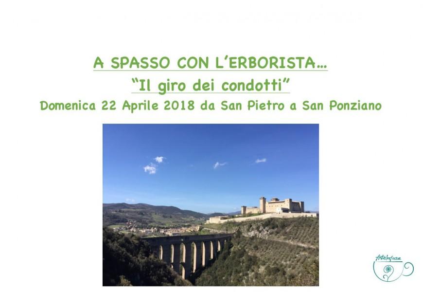 <!--:it-->A spasso con l'erborista... <!--:--><!--:en-->Strolling with the herbalist<!--:--> @ Chiesa di San Pietro | Spoleto | Italia