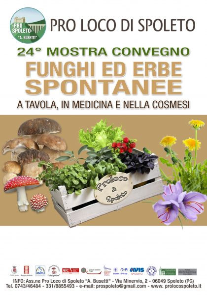 "<!--:it-->24° Mostra Convegno di Micologia ""Funghi ed Erbe Spontanee""<!--:--><!--:en-->24th Exhibition and Conference of Mycology ""Mushrooms and Wild Herbs""<!--:--> @ Ex Monte di Pietà e vie limitrofe 